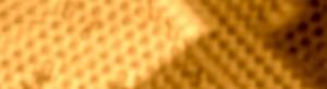 RG1400-L2
